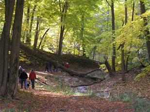 Fish Creek Fall Hike web.jpg